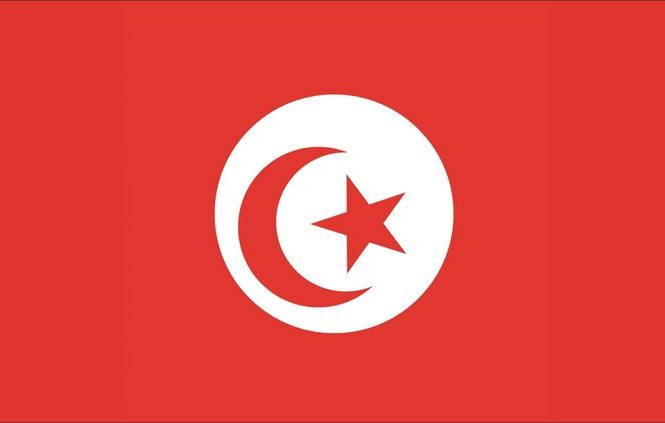 tunisia-flag-19-700x